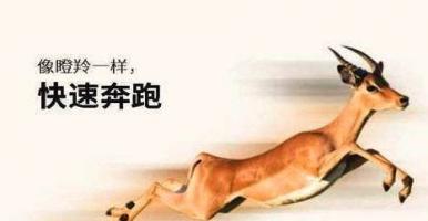 """瞪羚企业:武汉智博创享上榜2019年度光谷""""瞪羚企业""""名单"""